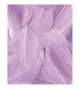 Plumas fantasía color violeta - 13030032
