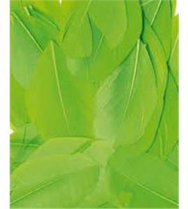 Plumas fantasía verdes - 13030025