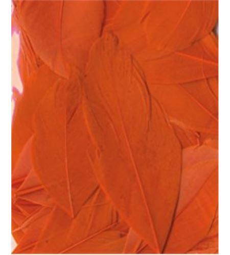 Plumas fantasía naranjas - 13030027